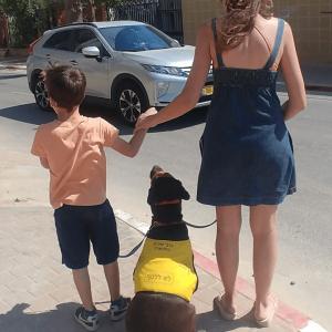 כלבי-שירות-המרכז-להכשרת-כלבי-שירות (1)